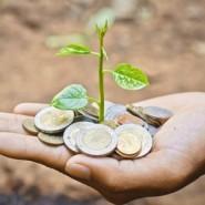 Développement durable : faites-vous accompagner par un pro