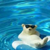 Profiter de sa piscine en toutes circonstances