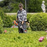 Et si votre jardin suivait les tendances pour cette année 2017 ?