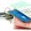 Que faire en cas de vol ou de perte de votre carte grise ?