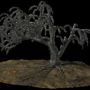 Quelques conseils pour déraciner et replanter un arbre