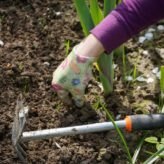 Jardinage: les outils indispensables