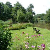 Jardinage : comment créer un belle bordure végétale ?