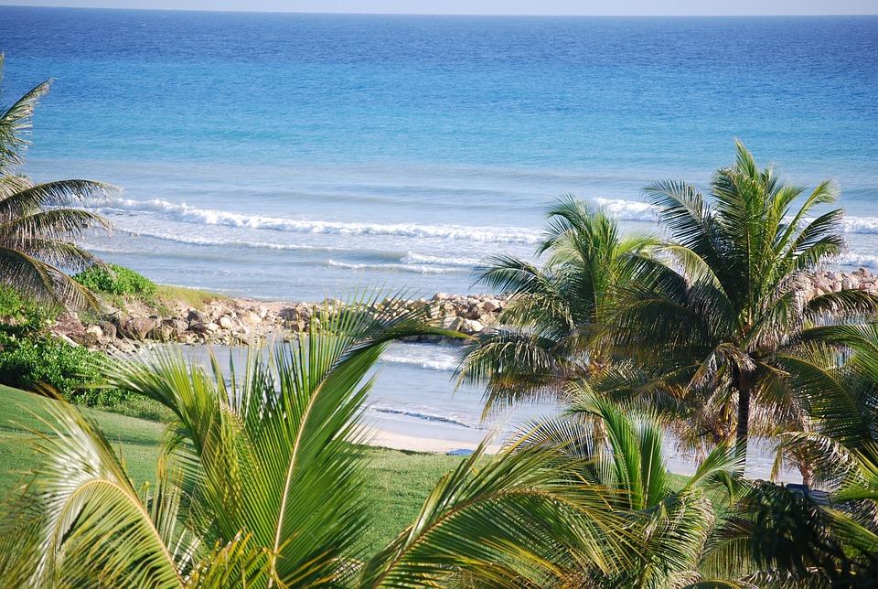 Escapade en Jamaïque : les incontournables