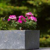 3 bonnes raisons d'opter pour des jardinières en béton