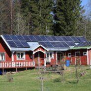 Maisons écologiques : les modèles qui s'offrent à vous